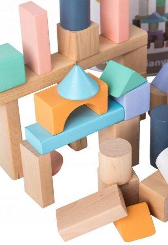 Σετ ξύλινα τουβλάκια 50 τεμάχια Ecotoys 45495