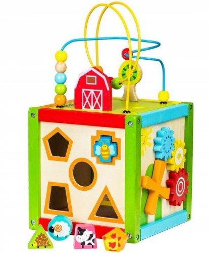Κύβος δραστηριοτήτων με κυβάκια Ecotoys 1004