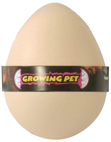 Αβγό - Έκπληξη