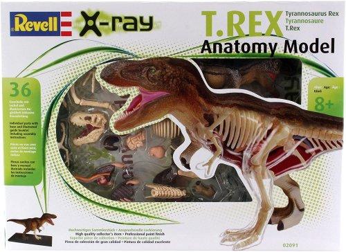 Model Kit T-Rex Ανατομία Revell 02091